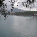 wofgangsee-img_2950